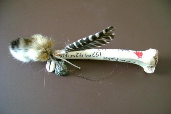 Anne Clarkson's gift